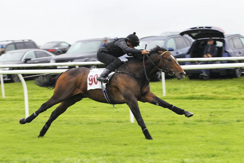 ARQANA BREEZE UP SALE: Outstanding trade is boost for everyone