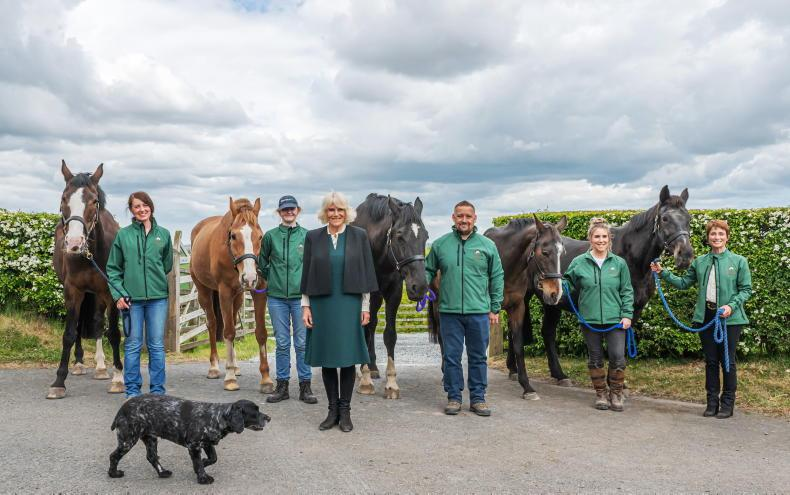 PONY TALES: Bowled over by royal visit