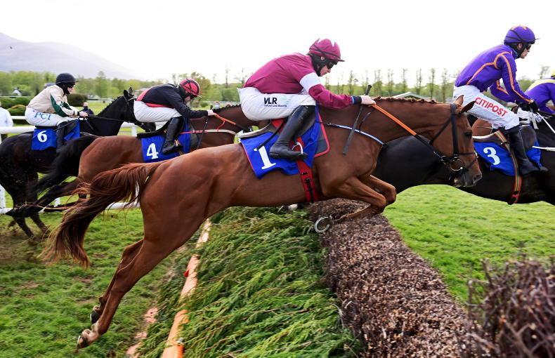 Rejuvenated Samcro on target for Galway Plate