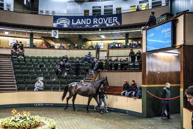 SALES: Time to stock up on stores at Goffs