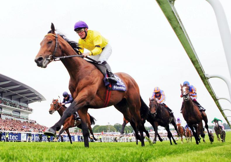OUTLOOK: The Derby desperately needs a star to emerge this Saturday