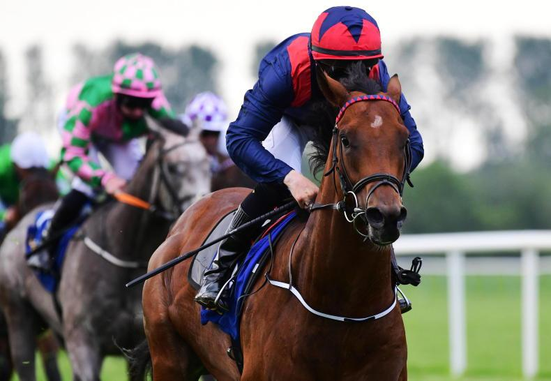 TIPPERARY TUESDAY: 'Real deal' Jet powers home to set up Ascot bid