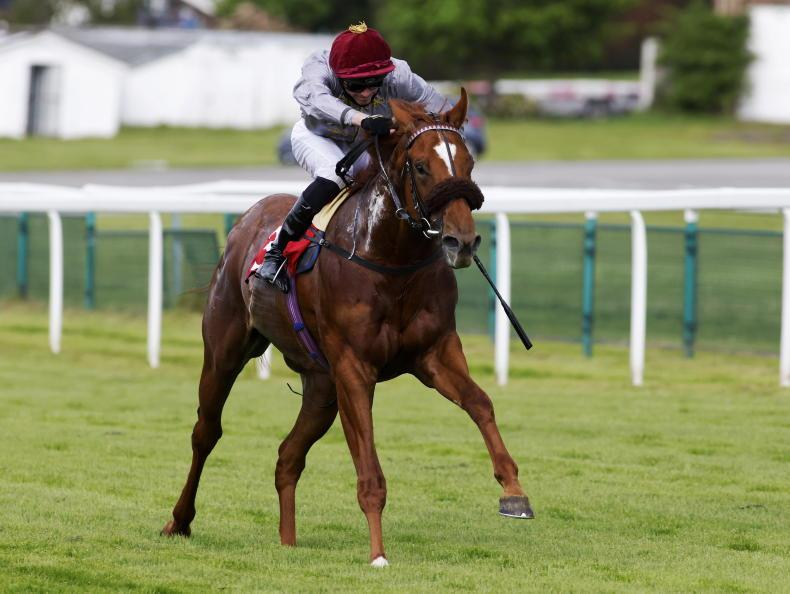 TIME WILL TELL: Ebro look set for Ascot tests
