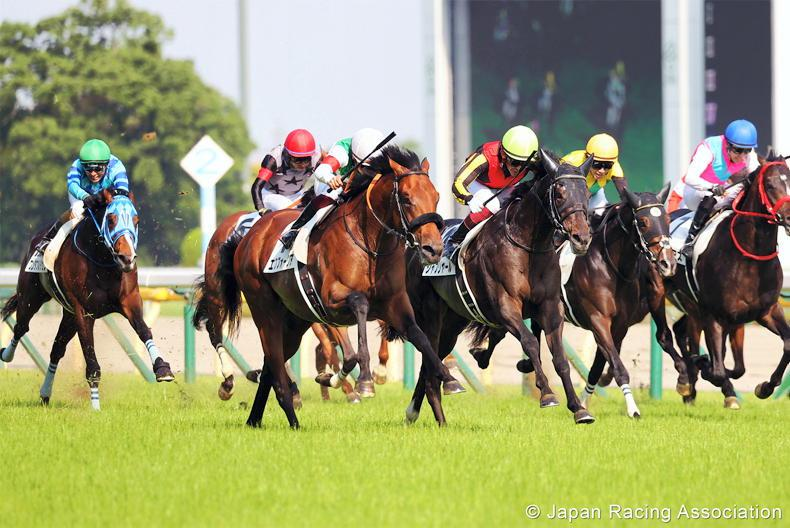 JAPAN: Shahryar edges Efforia in Derby thriller