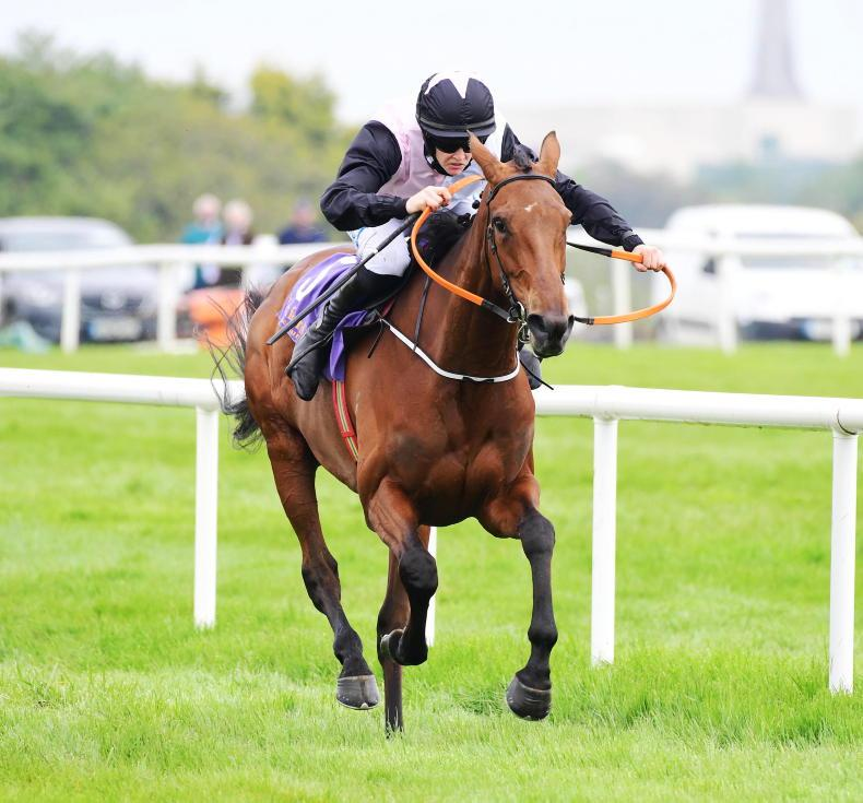 WEXFORD WEDNESDAY: Smooth Gin continues upturn in form