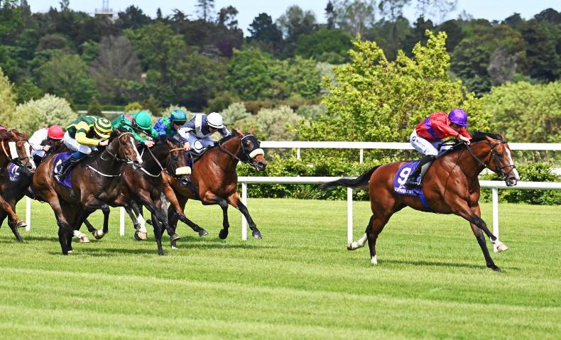 LEOPARDSTOWN THURSDAY: Magnanimous victory sets up Jersey bid