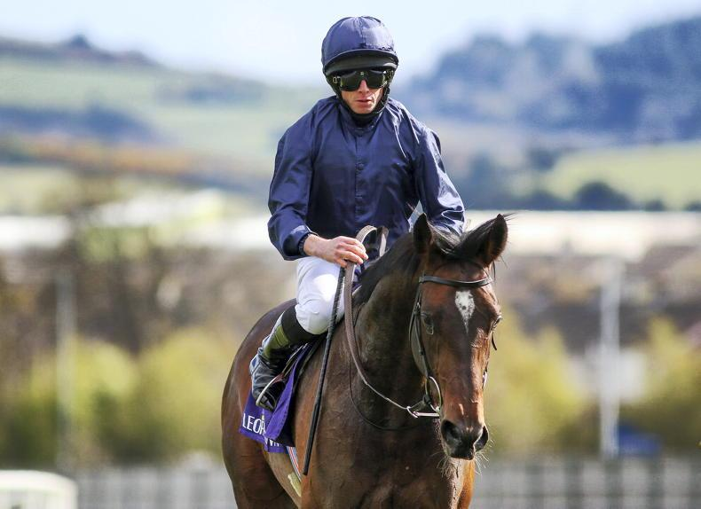 THE DERBY: Can this Ballet be the star both Coolmore and the Derby desires?