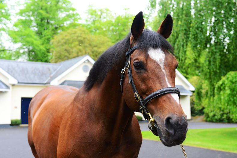 THE WEEK THAT WAS: There's only one Galileo!