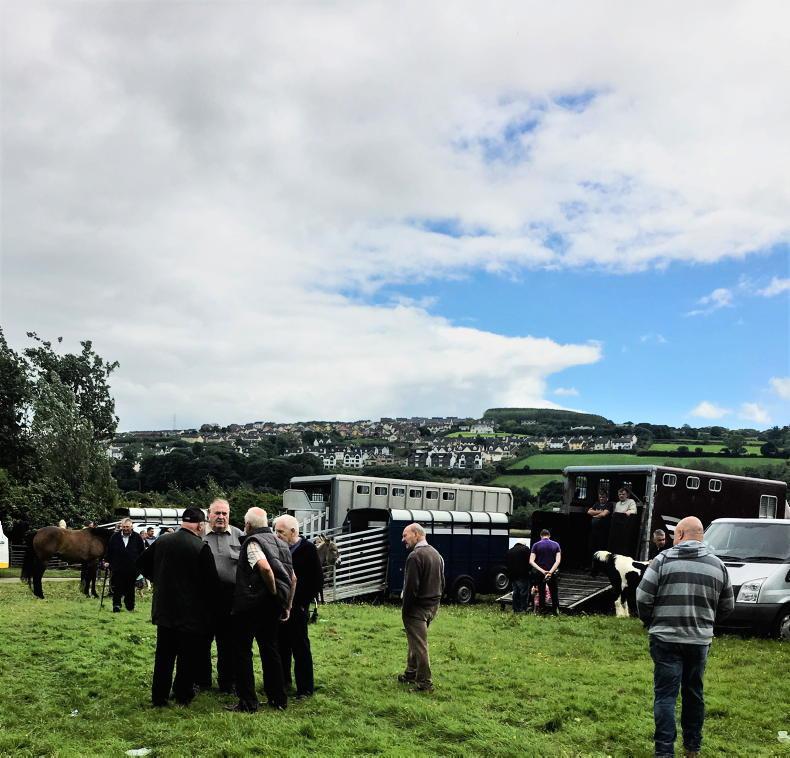 NEWS IN BRIEF: June Horse Fair 2021 cancelled