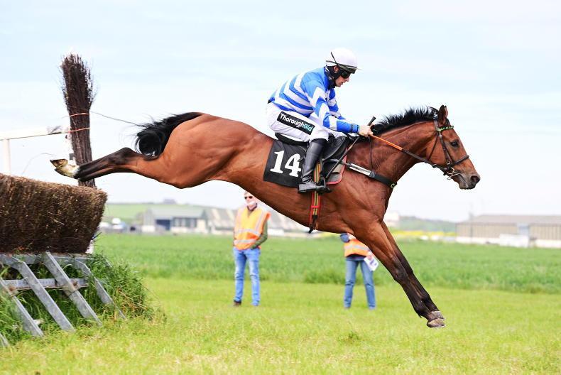 KIRKISTOWN SATURDAY: Bowe\Doyle horses dead heat