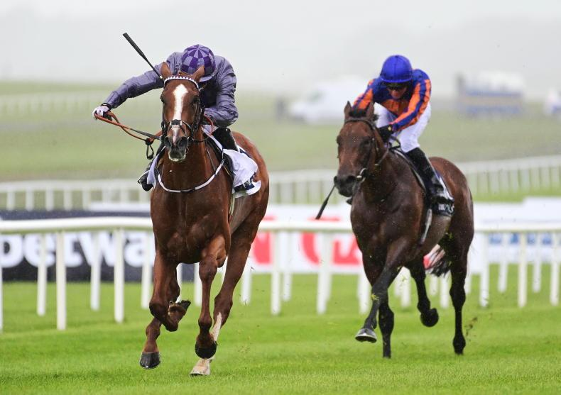 DONN MCCLEAN: Ballet the right favourite but this colt is a real threat