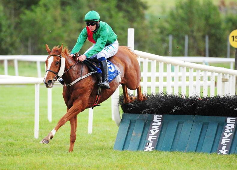LISTOWEL SUNDAY: My Sister Sarah to see out trip