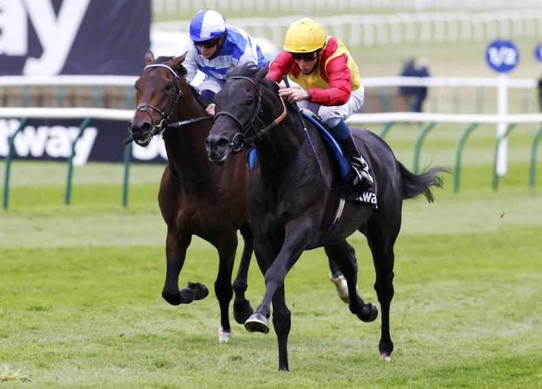 RACING CENTRAL: A Wednesday Derby? A home winner might just do the trick instead