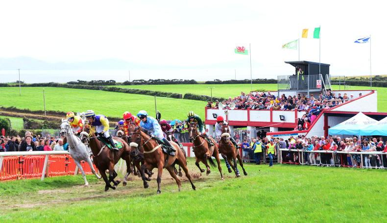NEWS: Pony racing could return this summer