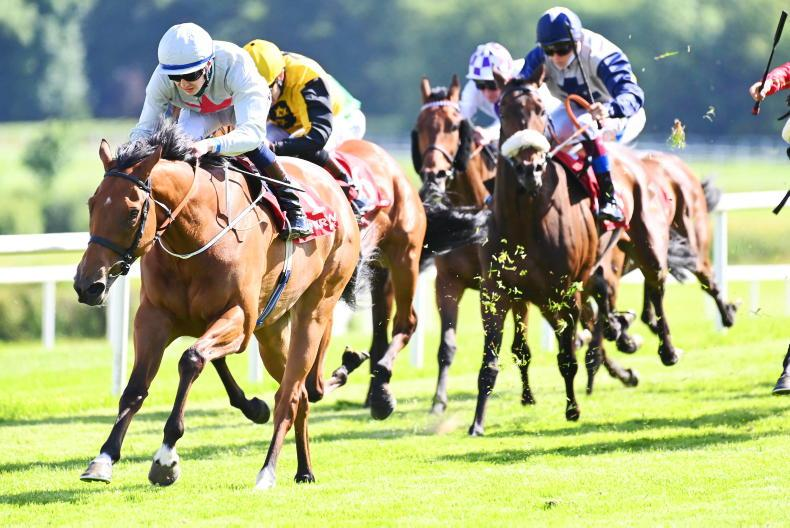 GOWRAN PARK MONDAY: Murphy's magic form continues with first treble