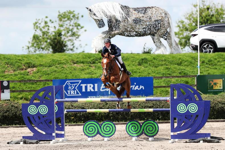 SHOW JUMPING: Derwin on Springs to win