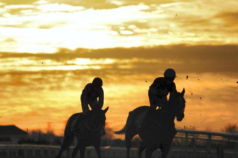 HORSES TO FOLLOW: Eyecatchers of the week