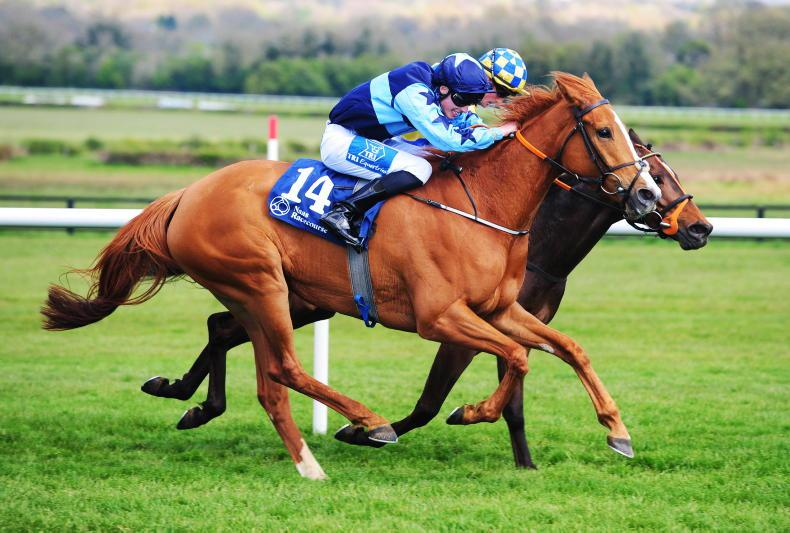 GOWRAN PARK SUNDAY: Gena is worth a second chance