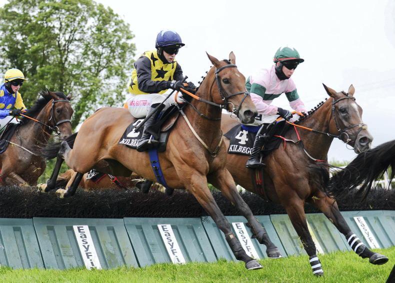 DOWNPATRICK SUNDAY: Joy can bring cheer in mares' hurdle
