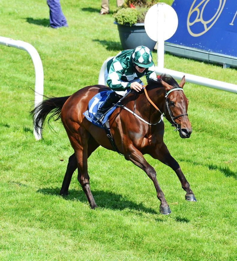 ROYAL ASCOT: Davisons over the Moon with big Commonwealth chance
