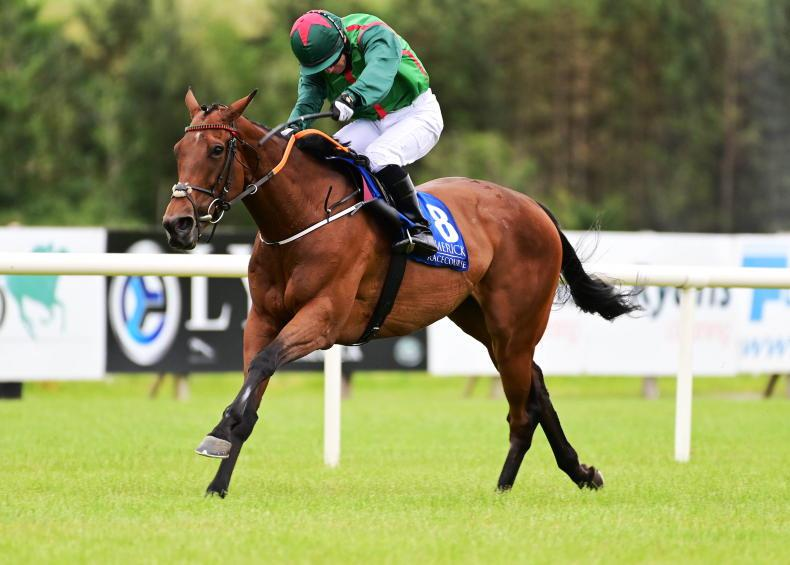 LIMERICK SATURDAY: Cape Islay flat out for de Bromhead