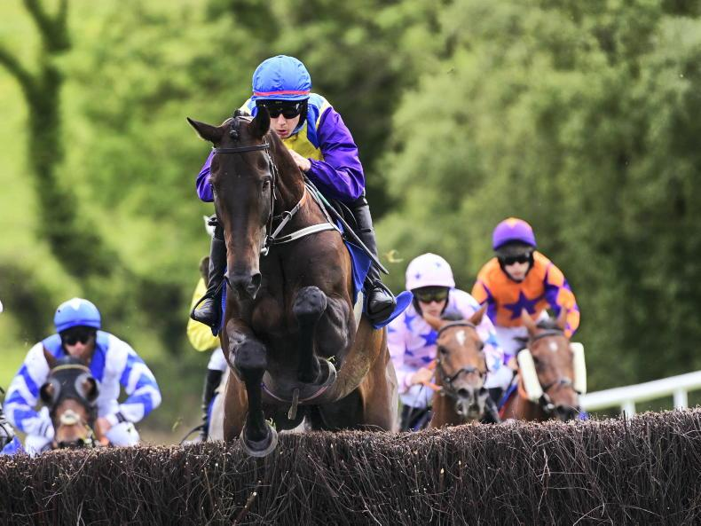 DOWNPATRICK SATURDAY: O'Sullivan rules the Roost with double