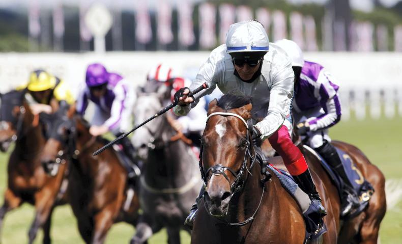 Palace Pier delivers perfect start for Dettori