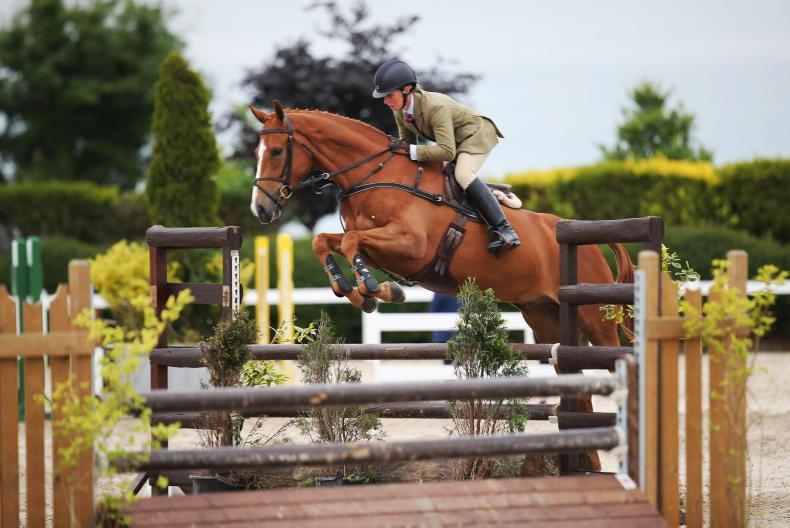 PICTURE DESK: Mullingar Equestrian Showing Show