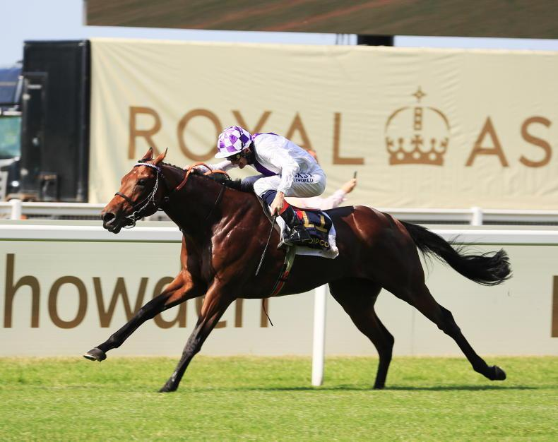Poetic Flare rules supreme in St James's Palace demolition