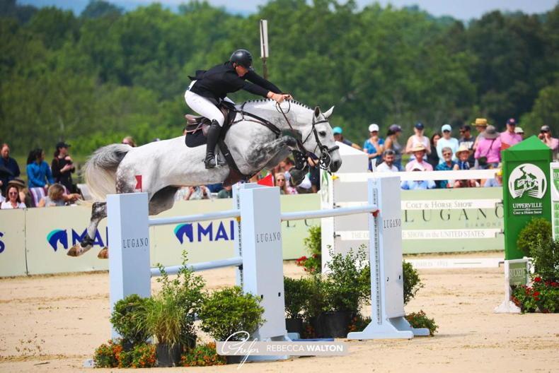 INTERNATIONAL: Coyle lands $213,300 Upperville Grand Prix