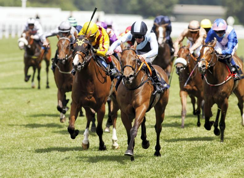 ROYAL ASCOT WEDNESDAY: Super Suzy too Quick for Queen Mary rivals