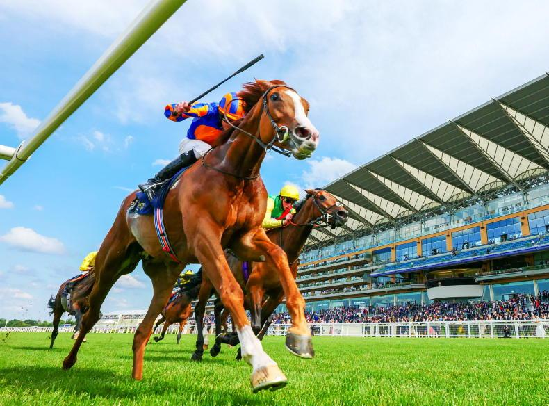 ROYAL ASCOT: Quotes of the week: 'I am pretty lost for words'