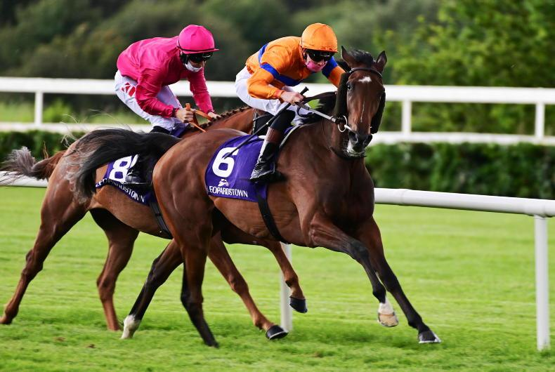 LEOPARDSTOWN WEDNESDAY: O'Briens in form at Leopardstown