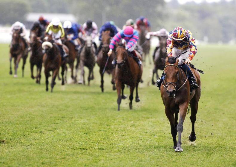 ROYAL ASCOT: First strike for Johnny Murtagh and Ben Coen