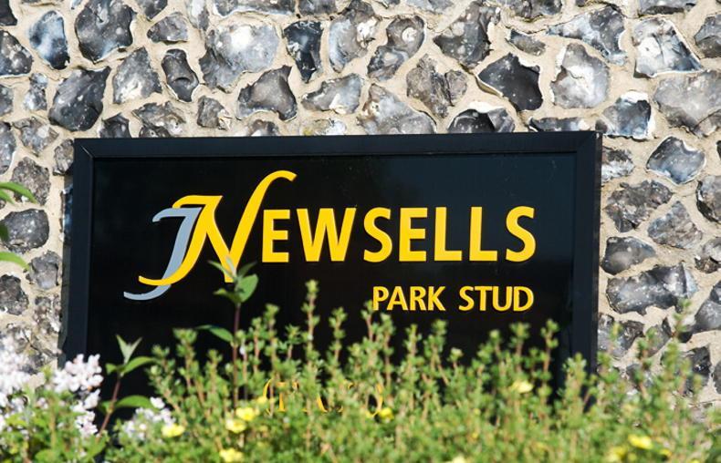 NEWS: Newsells Park Stud sold