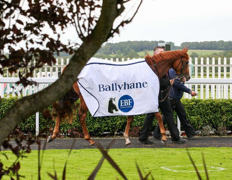 NEWS: Irish EBF Ballyhane Stakes worth €300,000