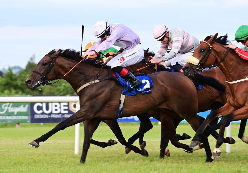 LIMERICK FRIDAY: Cathal Byrnes up and running with first winner