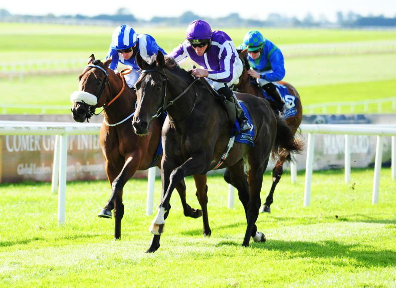Strong Epsom contingent to take on High Definition in Irish Derby