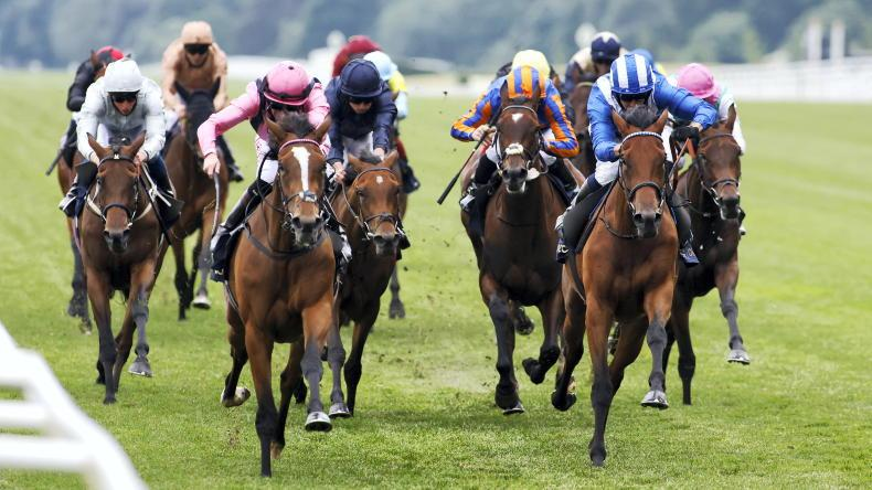 ROYAL ASCOT REVIEW: 'She was in the wrong place everywhere yet still nearly won'
