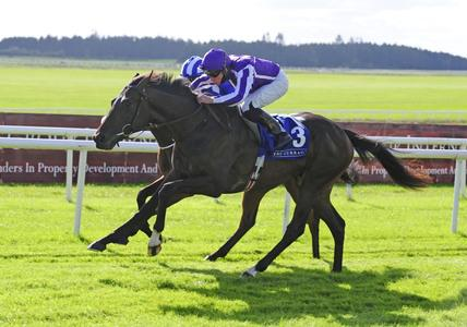 High Definition heads 11 contenders for Irish Derby crown