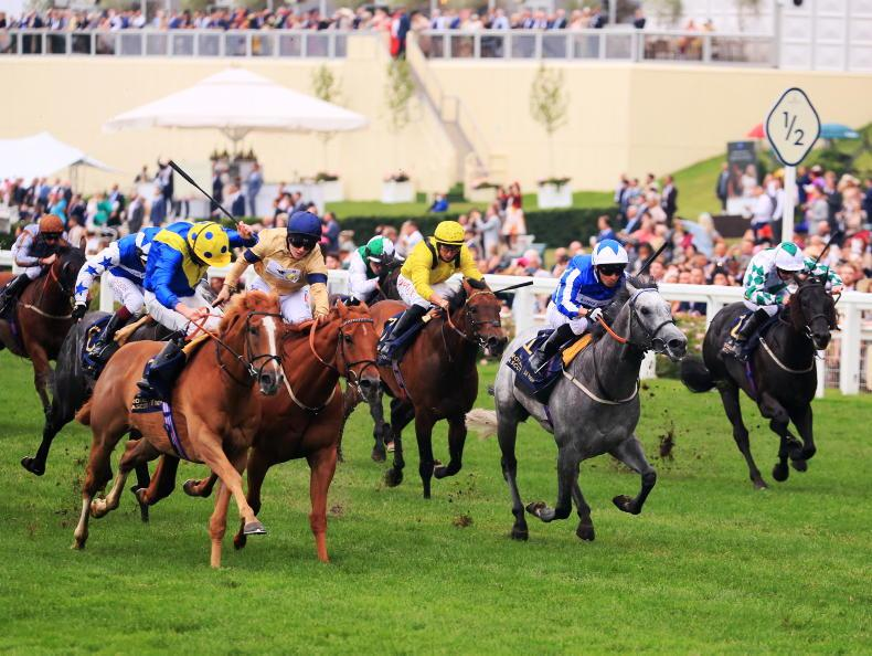 ROYAL ASCOT SATURDAY: Third time a Dream for Stoute ace