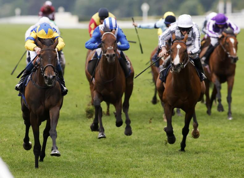 ROYAL ASCOT SATURDAY: Tonight is all Wright