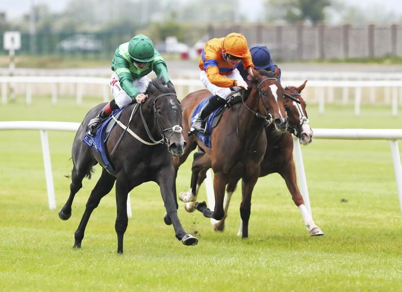CURRAGH SATURDAY: Back Lyons's good Dr Zempf to emulate Siskin in the Railway