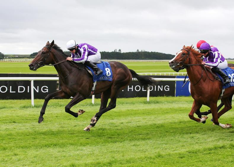 IRISH DERBY: Take on High Defintion with this 16/1 value play