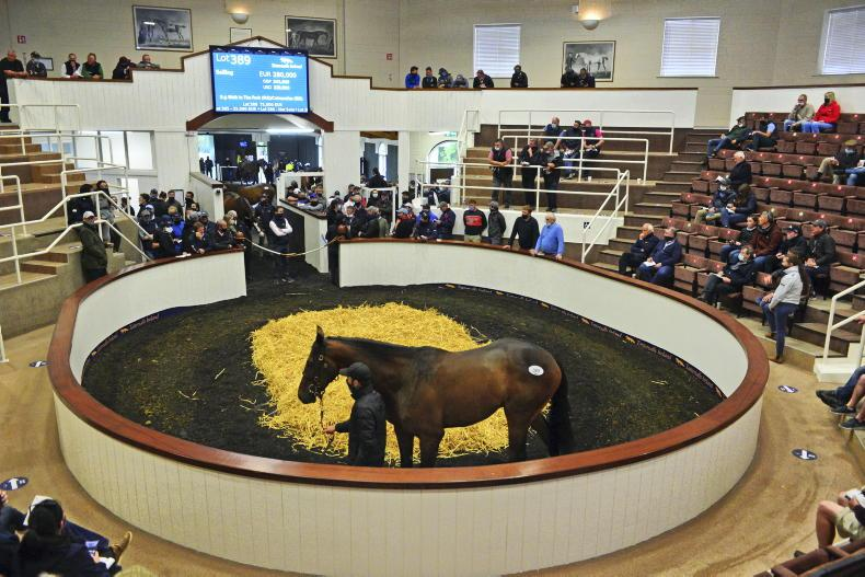 TATTERSALLS DERBY SALE: Selected lots to note