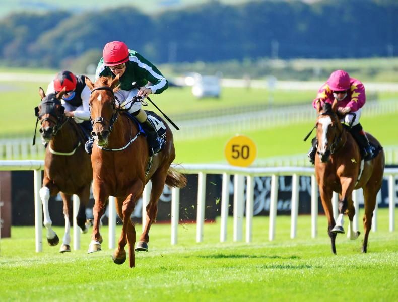 CURRAGH SUNDAY: This classy filly can claim deserved first Group 1