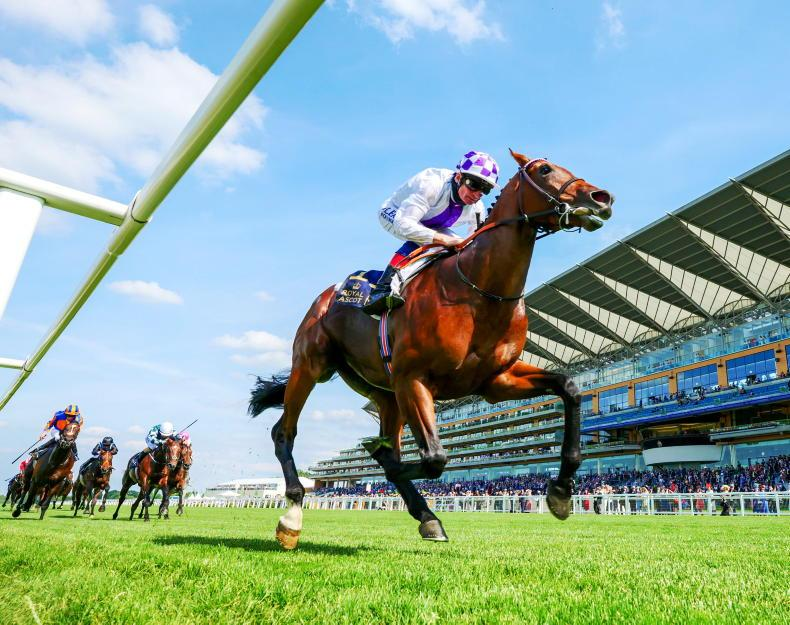 NEWS: Poetic Flare is world's top three-year-old