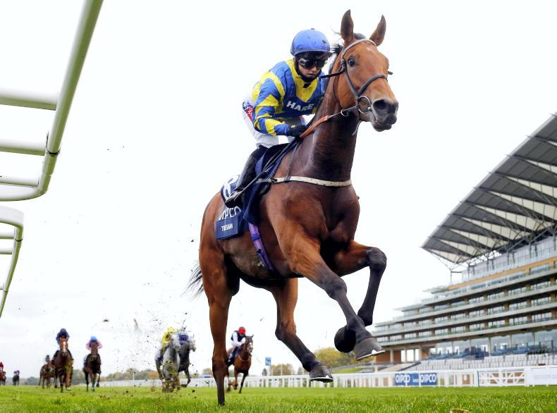 RORY DELARGY: My selection for the Northumberland Plate is Trueshan