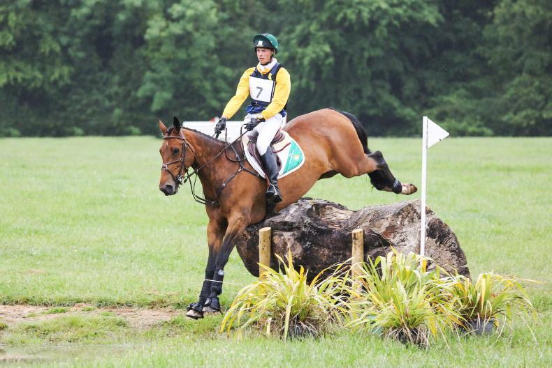 EVENTING: Yellow ribbons bring brightness to Grove