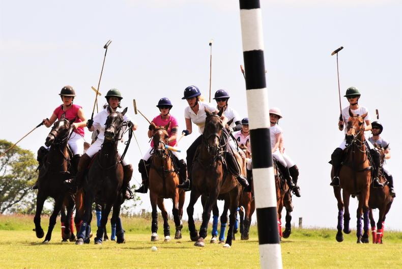 POLO: Training events a gateway to polo lifestyle